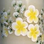 frangipani-yellow