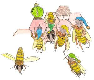 Bees Sleeping
