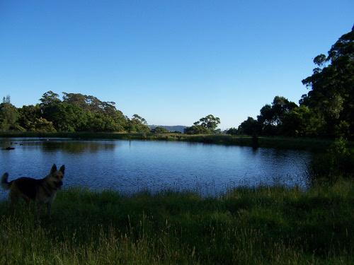 Rani by the lake