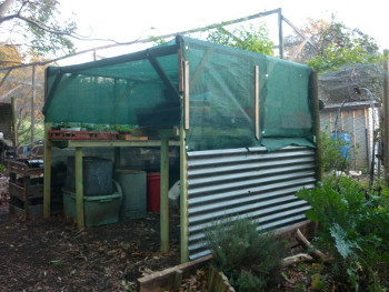Seedling Shed